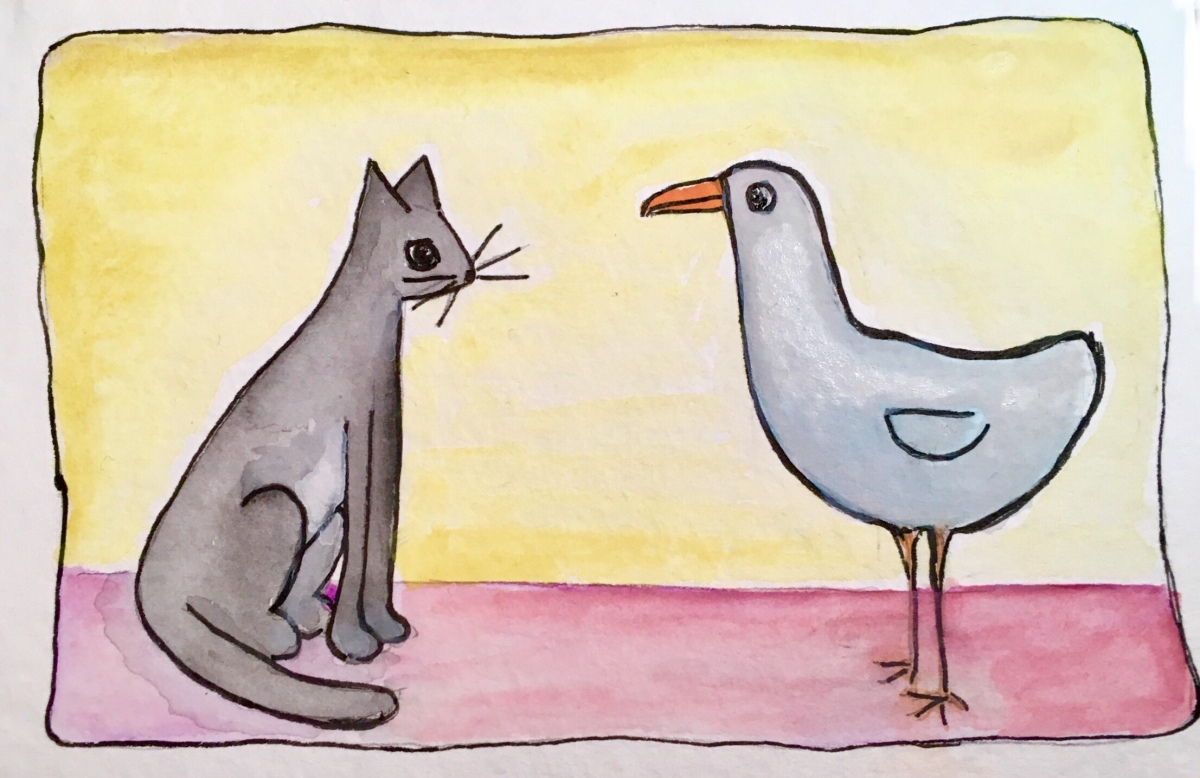 237. Cat and Seagull